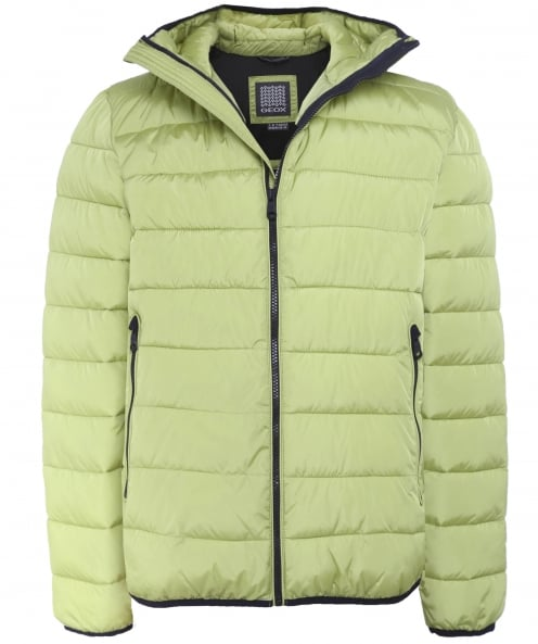 Geox Padded Hood Jacket