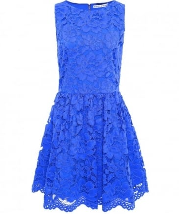 Ginger Lace Skater Dress