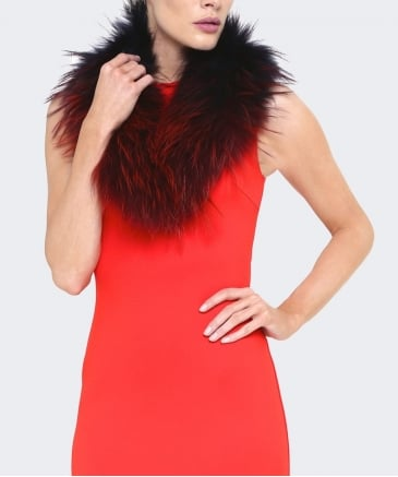 Tipped Fur Collar
