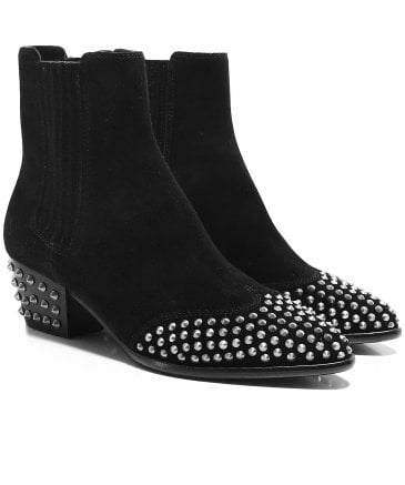 Ash Women's Hook Studded Ankle Boots